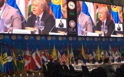 Consejo Permanente de la OEA aprobó el ingreso de Transparencia Electoral a su Registro de OSC